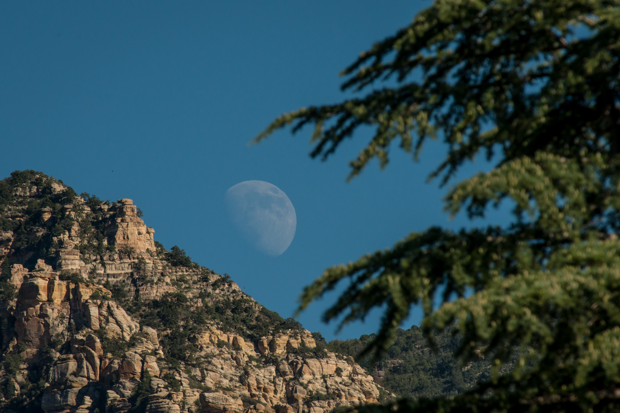 moon in Sedona arizona