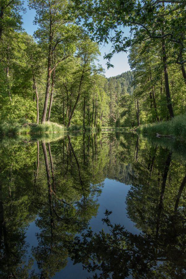 Sedona Oak Creek